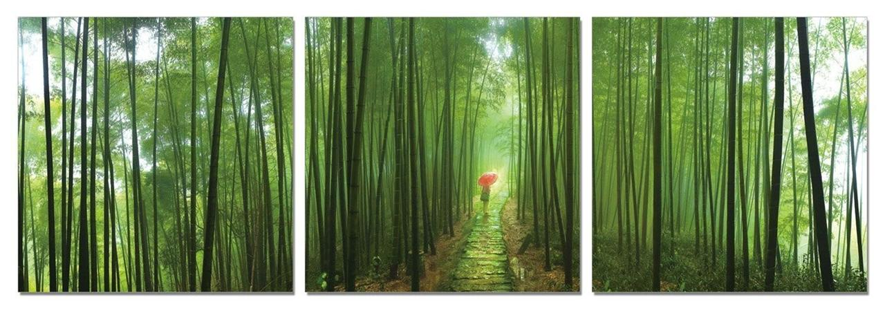 Bamboo Wall Art framed large modern contemporary canvas wall art print painting