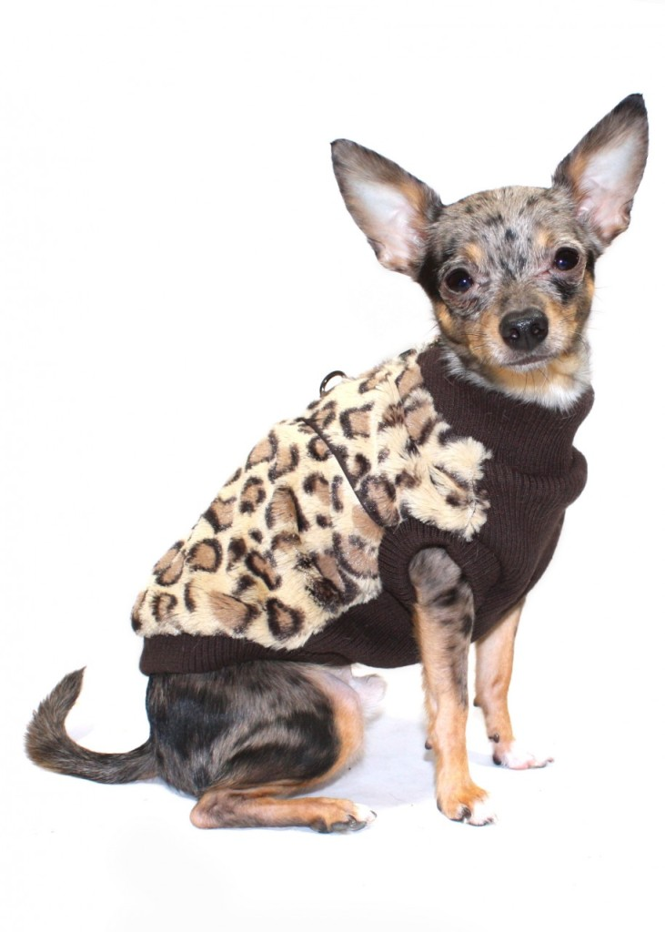 Hip Doggie Super Soft Brown Cheetah Print Mink Dog Vest