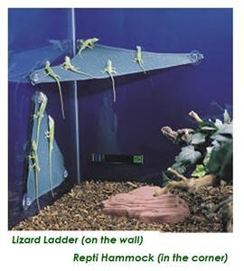 Zoo Med Mesh Lizard Ladder Climbing Reptile Hang Out