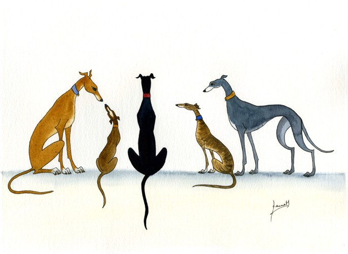 LARGE PAINTING GREYHOUND LURCHER WHIPPET DOGS ART 6200  : 407168206o from www.ebay.co.uk size 686 x 500 jpeg 56kB