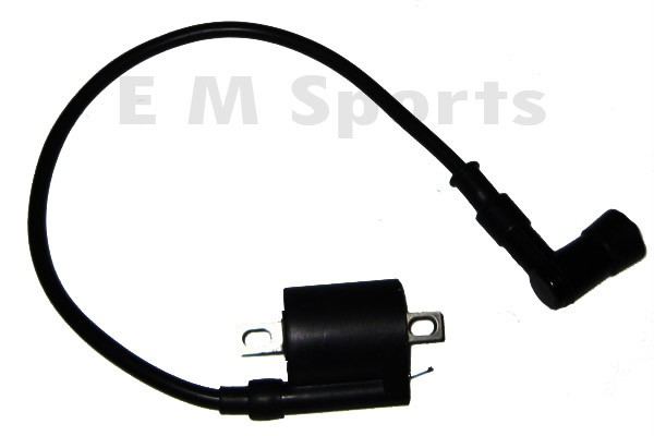 Sell Ignition Coil Module Magneto For TNG Venice LS SS