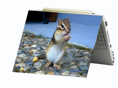 Squirrel Chipmunk Laptop Netbook Skin Decal Cover