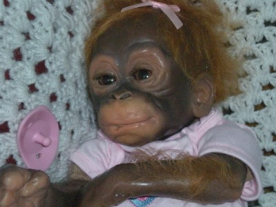 Baby Monkey Ashton Drake Little Umi Orangutan B Doll Ebay
