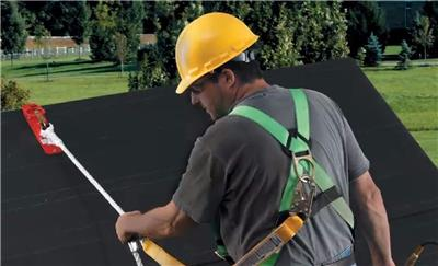 Werner Roofing Safety System Fall Protection Kit House