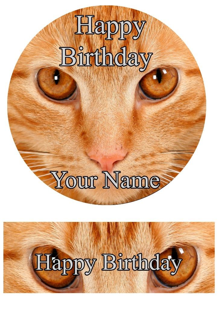 Ginger Cat Cake Topper Rice Papericing Personalised Decoration