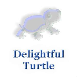 Delightful Turtle