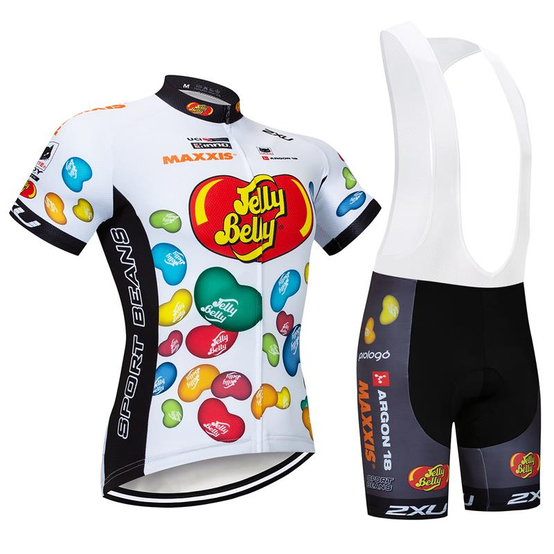 Red-crowned Crane Pattern Mens Cycling Jersey Bib Short Set Breathable materail