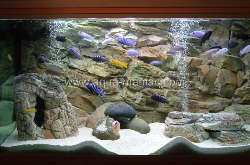Aquarium Backgrounds For Fish Tank 3d Thin Grey 1cm Thick