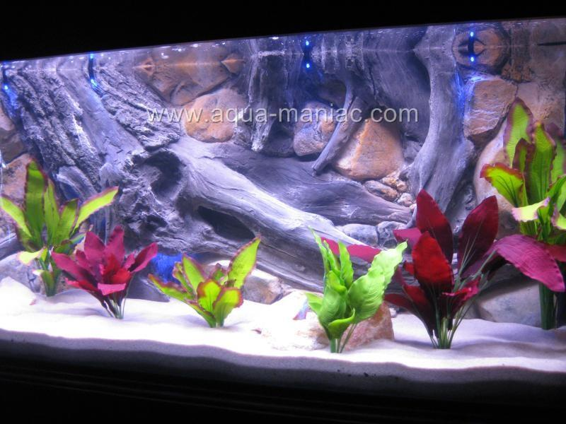 Aquarium 3D Background Tank Size 48x13 See Video Easy to Install on