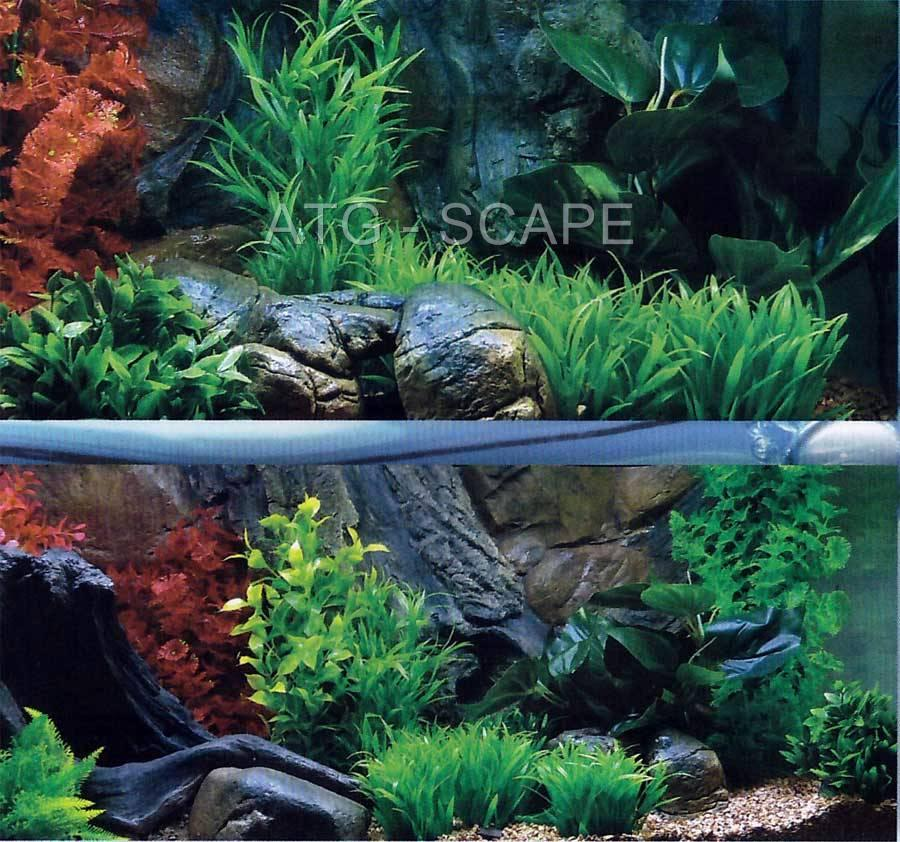 AQUARIUM 3D BACKGROUND FOR FISH TANK SIZE: 36x13