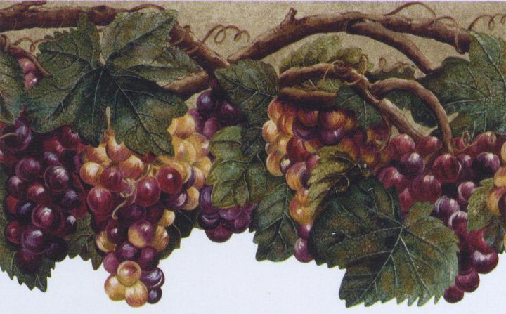 Wallpaper Border Tuscan Grape Leaves Purple Grapes | eBay