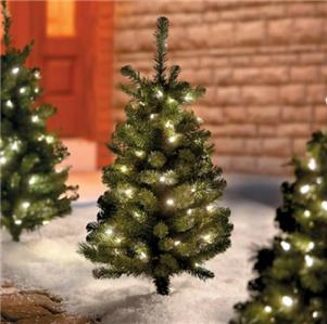 Set Of 2 Cordless Lighted Pre Lit Pathway Christmas Trees ...