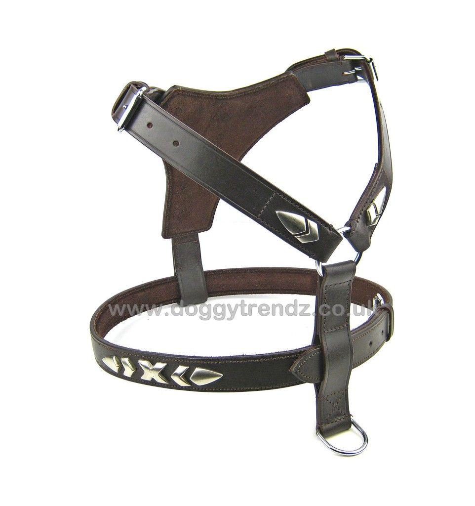 Brown Leather Dog Harness English STAFFY Staffordshire Bull Terrier Bulldog