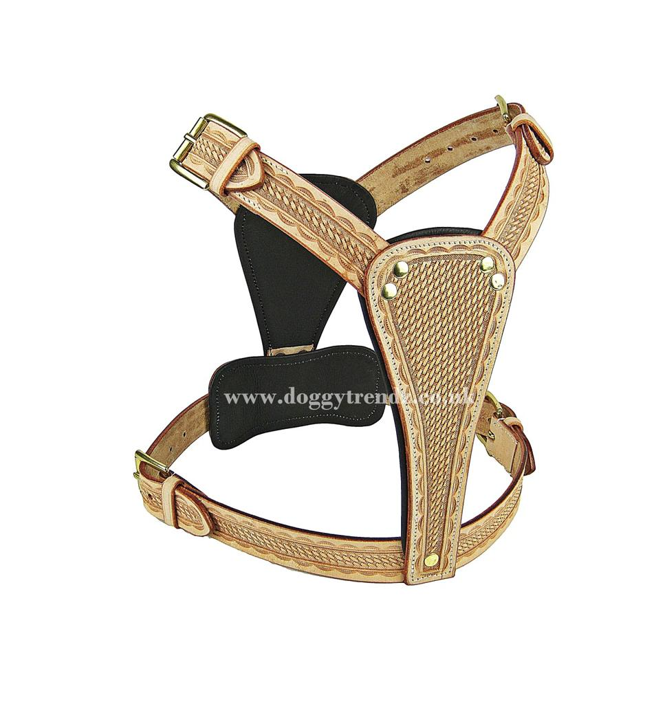 Handmade Natural Leather Dog Harness English Staffordshire Bull Terrier Staff