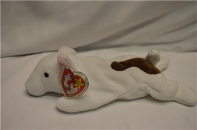 Dog Bull Terrier No Hang Tag Ty Beanie Baby Butch