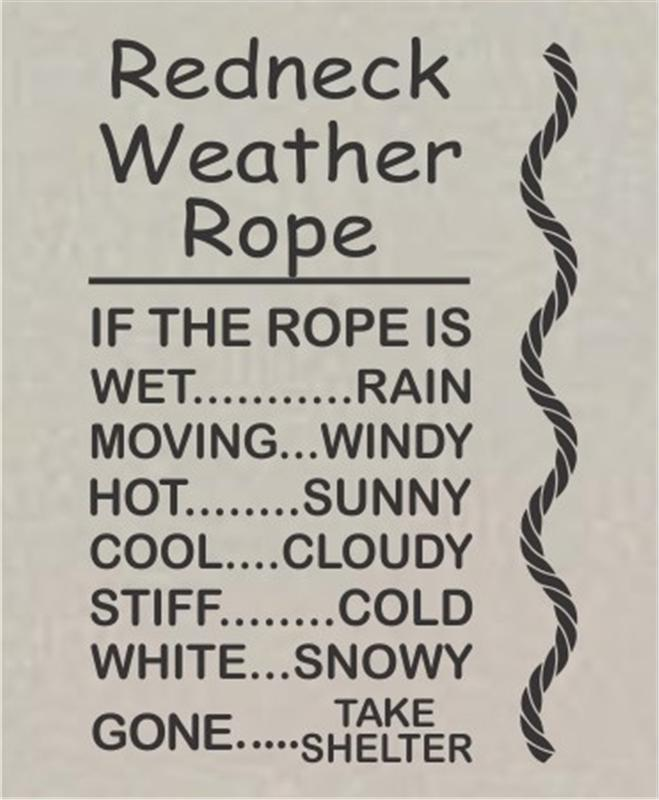 Redneck Weather Rope Vinyl Wall Art Decal Sticker Mural Home Decor