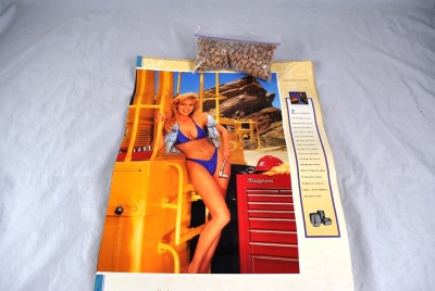 tools 1999 bikini on Snap calendar