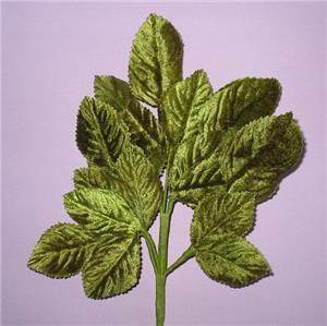 Vintage Green Velvet Rose Leaf Stems