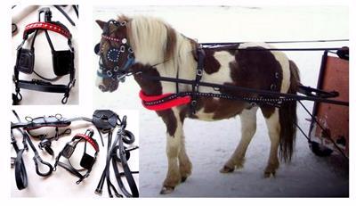 Back BLUE Black Synthetic MINI SHETLAND PONY Driving training cart harness
