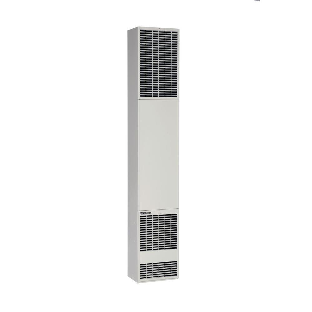 Williams 5008732 50,000 Btu/hr Counterflow Top-Vent Wall