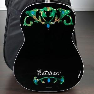 esteban ltd ed duende classical steel guitar package ebay. Black Bedroom Furniture Sets. Home Design Ideas
