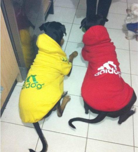 Big Puppy Dog Clothes Clothing Hooded T Shirt Summer Autum Wear 3XL