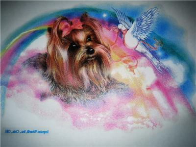 Yorkshire Terrier Puppy Dog Girls Shirt YORKIE Rainbow~12 18 months 2T