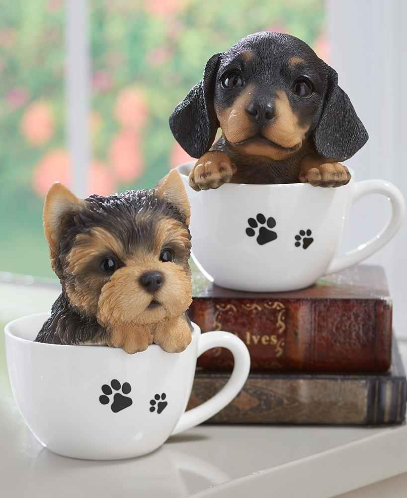 Details about Adorable FRENCH BULLDOG Teacup Puppy Peeking Realistic Statue  Dog Pet Breed Gift