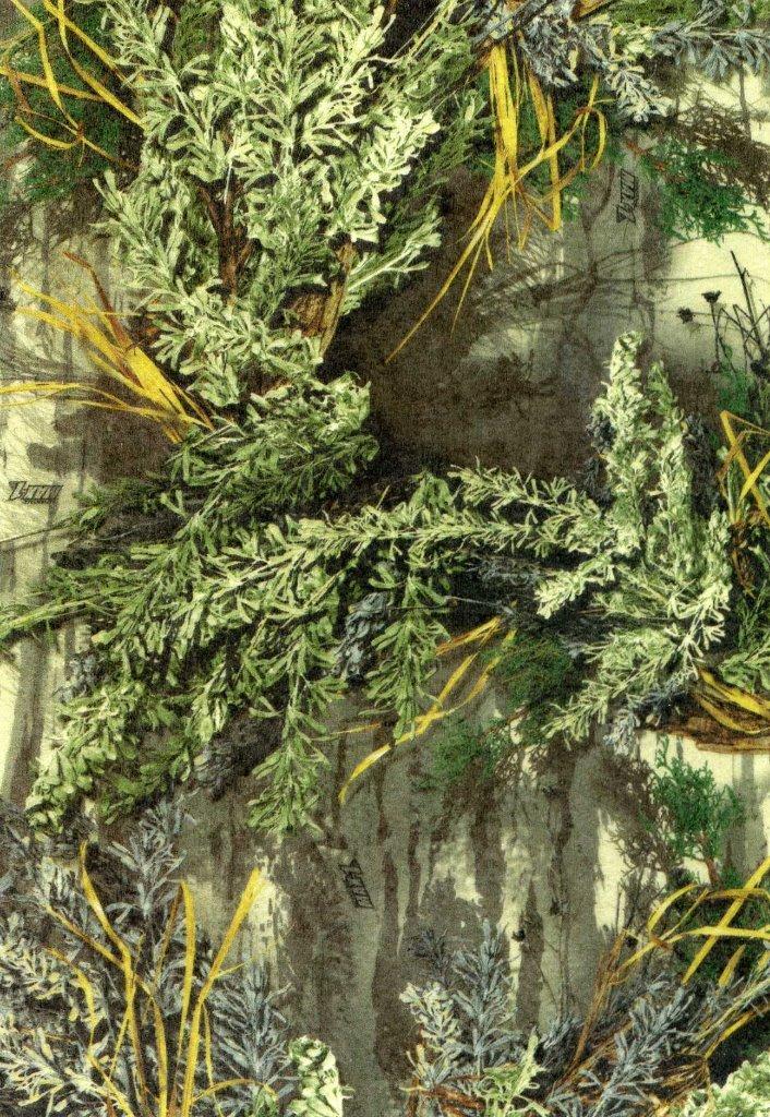 Mossy Oak vs. Real Tree?