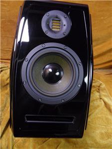 Active Speaker ADAM Tensor Epsilon