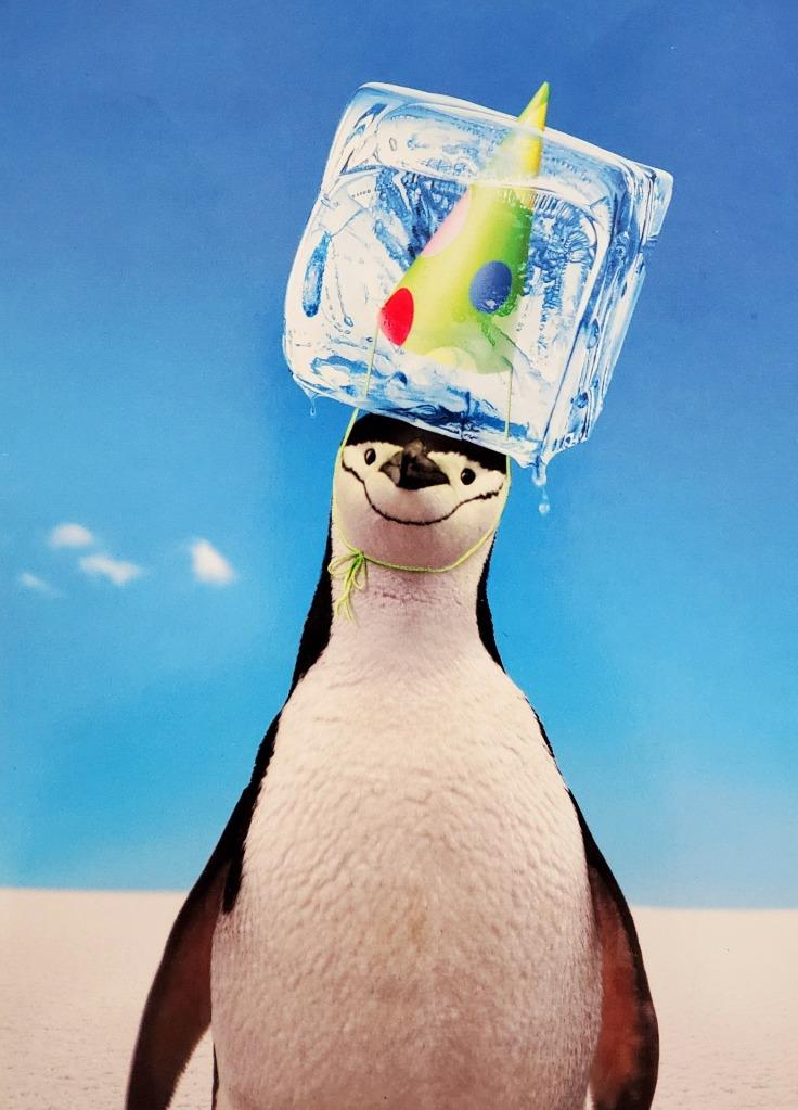 AVANTI PRESS PENGUIN WITH ICE CUBE ON HEAD GREETING